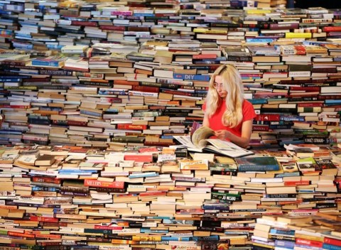 too-many-books2-480x352