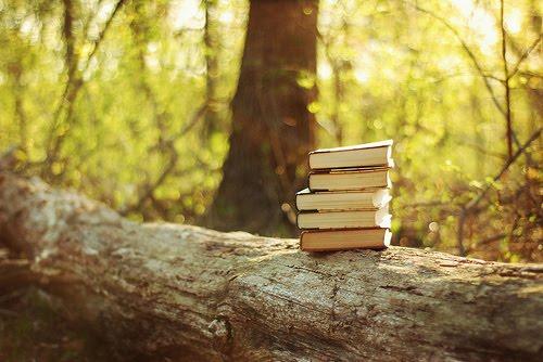 libro2barbol